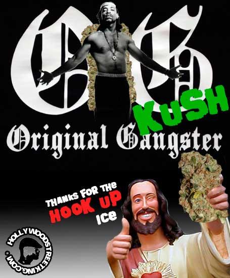 Classic OG Bud Review
