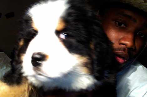 Frank Ocean Guard Dog