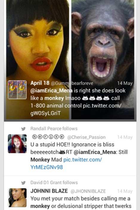 Erica Mena Racist Tweet